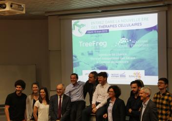 Licence Treefrog Equipe + partenaires